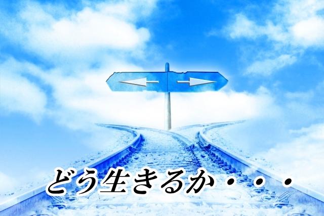 b06bcf20b3f8091925a4c94dd34c958a_s 「どう生きるか」宣伝が始まったねw